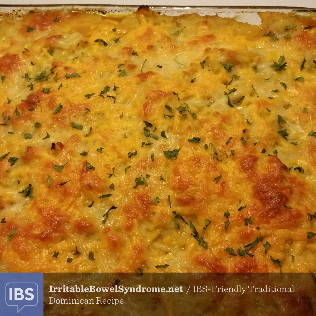 IBS-Friendly Traditional Dominican Recipe