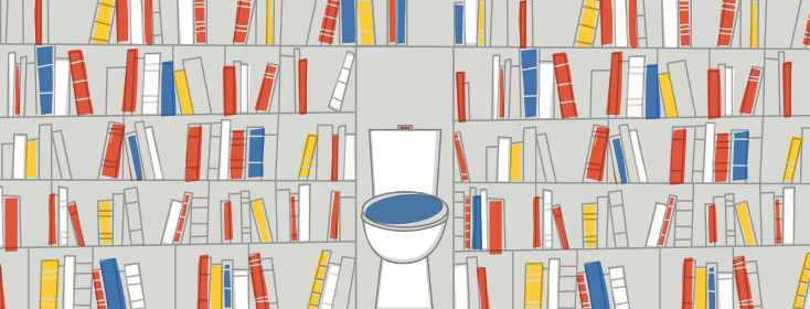 A toilet with a tall bookshelf full of books on either side