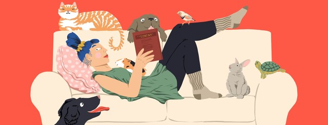 A woman reading sits with her feet up on a couch with all kinds of pets surrounding her.