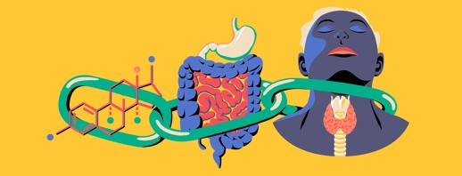 The Link Between IBS and Thyroid Disorders image